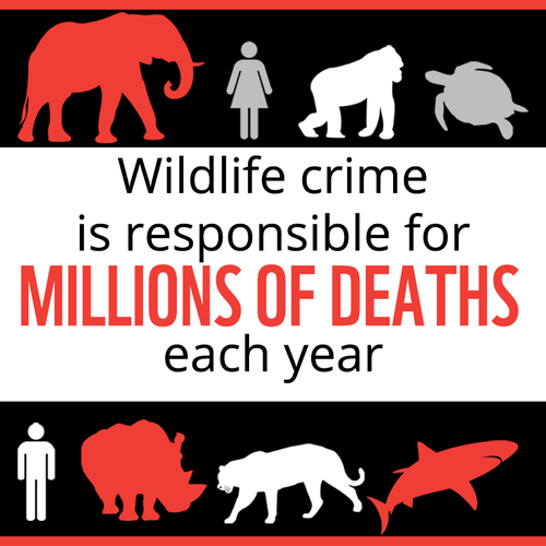 Millions-of-Deaths-Infographic_08.23.2013_SWC